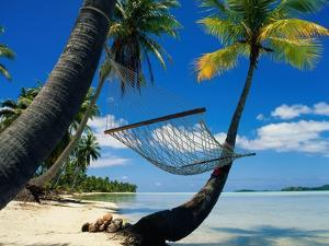 Hammock Hanging Seaside by Randy Faris