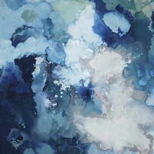 Blu Flo by Randy Hibberd