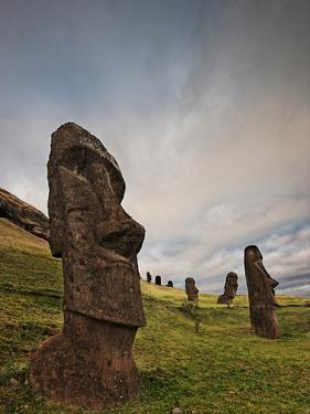 Ancient Moai Statues Dot a Hillside on Rano Raraku Crater by Randy Olson