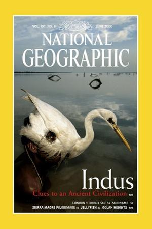 Cover of the June, 2000 National Geographic Magazine by Randy Olson