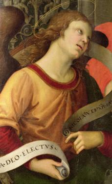 Angel, from the Polyptych of St. Nicolas of Tolentino, 1501 by Raphael