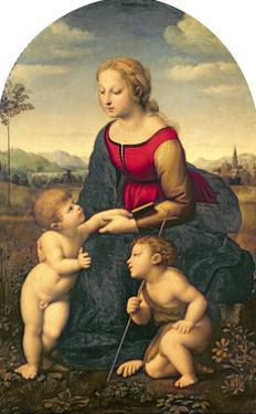 La Belle Jardiniere, 1507 by Raphael