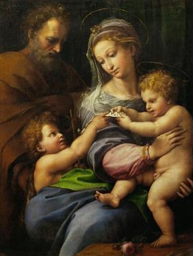 Madonna with a Rose by Raphael