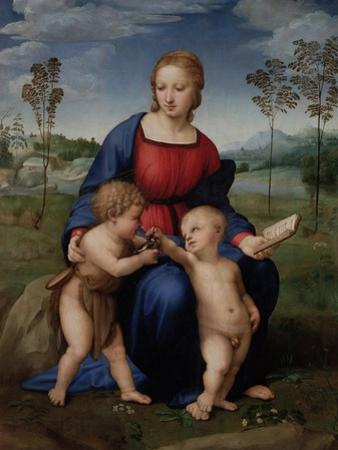 Madonna with Child, & Infant John the Baptist (Madonna of Goldfinch) by Raphael