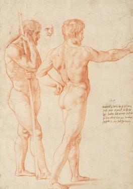 Nude Studies by Raphael by Raphael