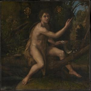 Saint John the Baptist, 1519 by Raphael