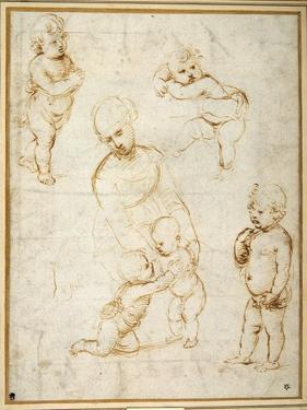 Studies for the 'Madonna of the Meadow', C.1505 by Raphael