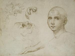 Studies for the Trinity of San Severo by Raphael