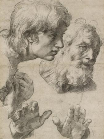 Studies of the Heads of Two Apostles and of their Hands by Raphael