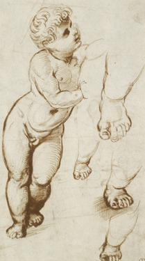 The Infant Christ and Other Studies (Pen and Dark-Brown Ink over Preliminary Indications in Leadpoi by Raphael