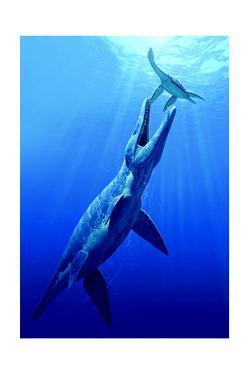 A Pliosaur Attacks a Plesiosaur by Raul D. Martin