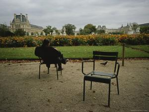 A Man Reads in the Tuileries Gardens by Raul Touzon