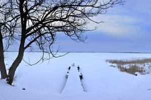 A Snow Covered Dock Stretches into the Frozen Saint Lawrence River by Raul Touzon