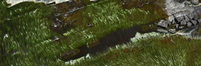 Aerial Panorama Image of the Mazaruni River with Heavy Algae Growth by Raul Touzon