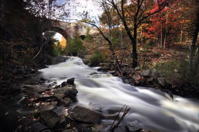 Fall foliage along Duck Creek. by Raul Touzon