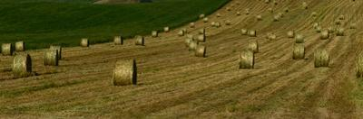 Hay Bales on Wheat Field by Raul Touzon