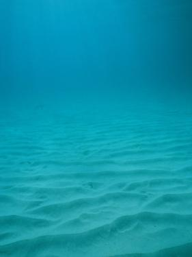 Underwater Shot of Clear Blue Water off of the Virgin Islands by Raul Touzon