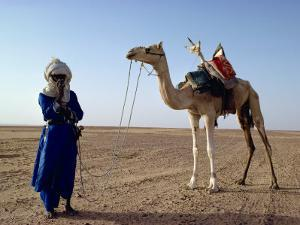 Tuareg Tribesman and Camel, Niger, Africa by Rawlings Walter