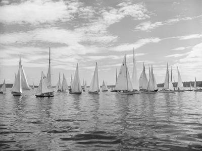 Boats Lined up for a Race on Lake Washington by Ray Krantz