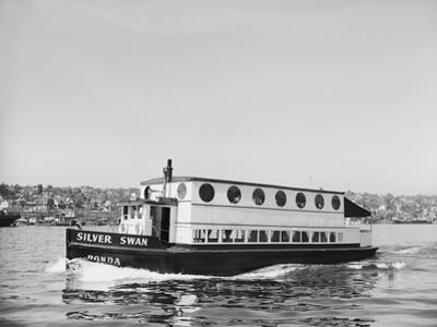 The Silver Swan on Lake Union by Ray Krantz