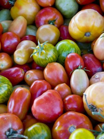 Red, Yellow and Green Tomatoes