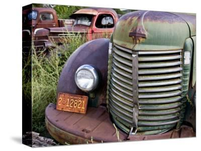 Rusted Pick-Up Trucks by Ray Laskowitz