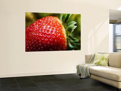 Strawberry by Ray Laskowitz