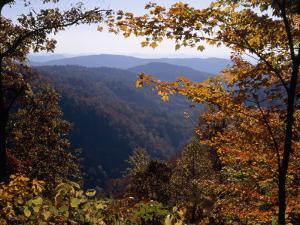A Blue Ridge Mountain Escarpment Framed by Maple Trees in Autumn Hues by Raymond Gehman