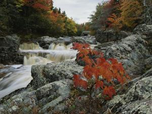 A Creek Rushes Past Autumn-Colored Trees by Raymond Gehman