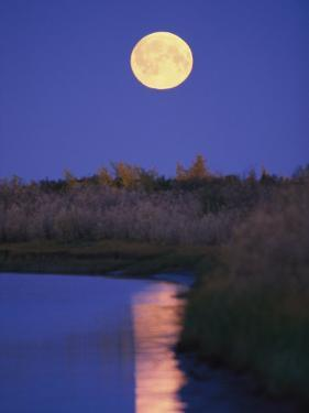 A Full Moon is Reflected in the Mackenzie River by Raymond Gehman