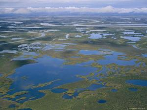 An Aerial View of the Mackenzie River Delta by Raymond Gehman