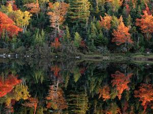 Autumn Foliage Reflected in a Canadian Lake by Raymond Gehman