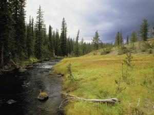 Bechler Meadows, Yellowstone National Park, Wyoming by Raymond Gehman