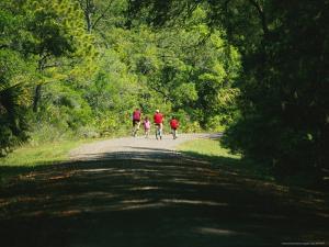 Cyclists on a Trail in the Pinckney Island National Wildlife Refuge by Raymond Gehman