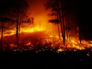 Flames from a Forest Fire Light up the Night by Raymond Gehman