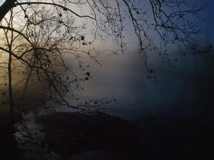 Fog and Silhouetted Trees at Sunrise on the Little Tennessee River by Raymond Gehman