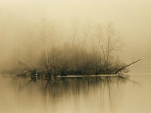 Fog Hovers Above the James River at Dawn by Raymond Gehman