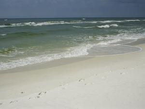 Footprints Along a Sandy Beach with Gentle Surf by Raymond Gehman