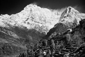 On The Annapurna Base Camp Trail, Nepal by Rebecca Gaal