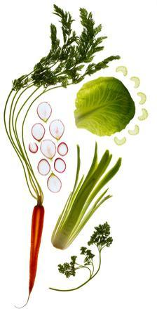 Plants Used to Make Remedies for Intestinal Disorders by Rebecca Hale