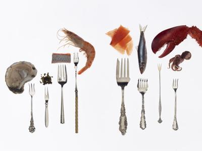 Various Forks Used for Oysters, Caviar, Sushi, Shrimp, Fish, Sardines, Lobster and Octopus