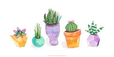 Succulent Display II by Rebekah Ewer
