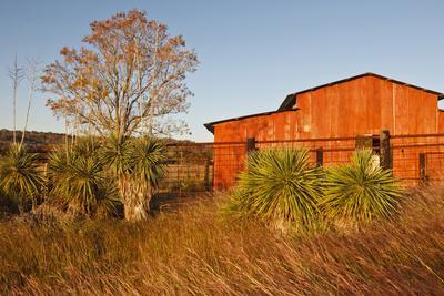 https://imgc.allpostersimages.com/img/posters/red-barn-in-texas-hill-country-usa_u-L-PN6N0U0.jpg?p=0
