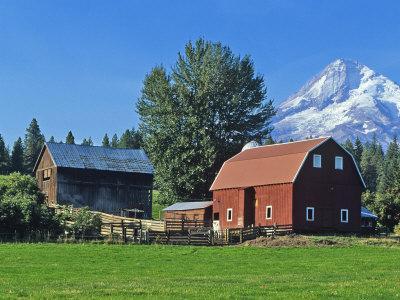 https://imgc.allpostersimages.com/img/posters/red-barn-in-the-hood-valley-mt-hood-oregon-usa_u-L-P3XJ490.jpg?p=0
