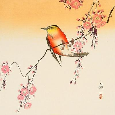 https://imgc.allpostersimages.com/img/posters/red-bird-and-cherry-blossoms_u-L-PNAAR60.jpg?artPerspective=n