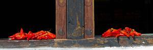 Red Chilies Drying on Window Sill, Paro, Bhutan