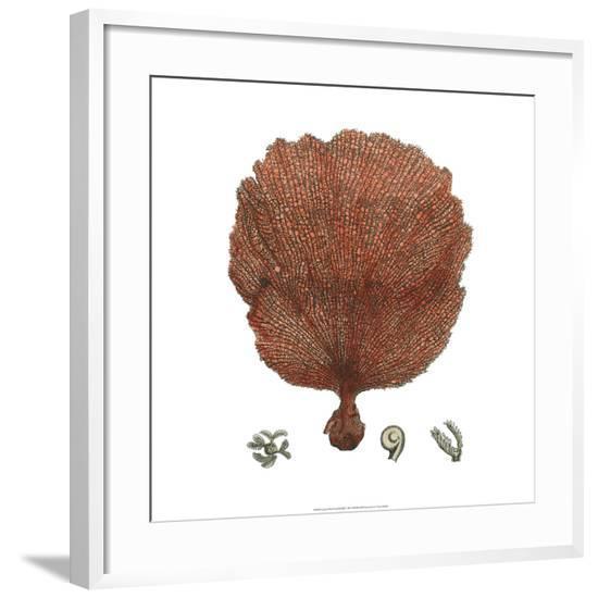 Red Coral II--Framed Giclee Print
