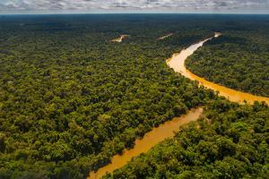 Rainforest Aerial, Yavari-Mirin River, Oxbow Lake and Primary Forest, Amazon Region, Peru by Redmond Durrell