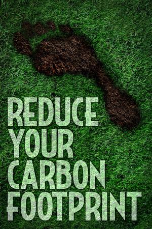 https://imgc.allpostersimages.com/img/posters/reduce-your-carbon-footprint-motivational_u-L-PYAU890.jpg?artPerspective=n