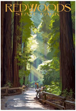 https://imgc.allpostersimages.com/img/posters/redwoods-state-park-pathway-in-trees_u-L-F78U2K0.jpg?artPerspective=n